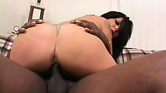 Gothic bitch gets her tramp-stamped cunt pounded by a huge wang