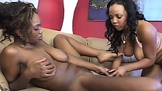 Two lustful ebony lesbians use a few sex toys to reach the peak of their climax