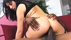 Brunette whore in fishnets gets pounded deep and hard by a BBC