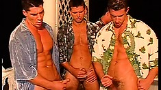 Studs on a tropical vacation pound each other with their hard cocks