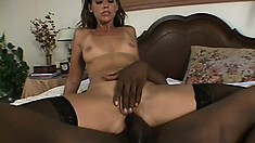 Luscious housewife with lovely tits Cherie seduces the black plumber
