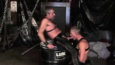 Gorgeous studs Bjorn and Freddie embark on a journey to find pleasure