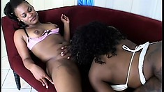 These sexy black lesbians take turns fucking their favorite toys