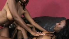 Two voluptuous black babes use a strap-on dildo to fulfill their lesbian desires