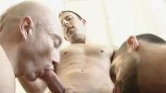 Four handsome gay friends explore their desire for hardcore anal sex