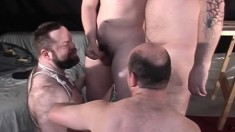Big Daddy And His Hot Gay Buddies Enjoying Lots Of Sucking And Fucking