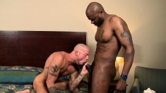 Horny white stud has a muscled black hunk plowing his ass on the bed