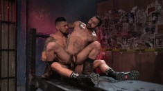 Two muscled and tattooed studs remove their jeans for awesome oral and anal sex