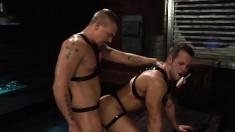 A couple of delicious bucks enjoy having some steamy gay fun