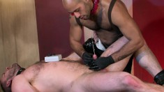 Muscled Bear Gets His Cock Sounded And His Ass Probed By A Ripped Black Stud
