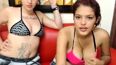 Latin Chick Eva Striptease